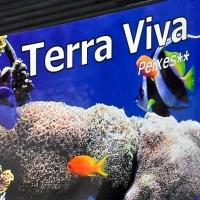 Obra Terra Viva