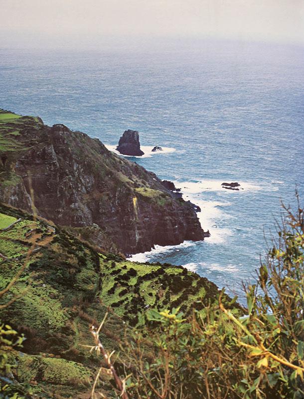 Aupper | Obra Terras de Portugal - Madeira