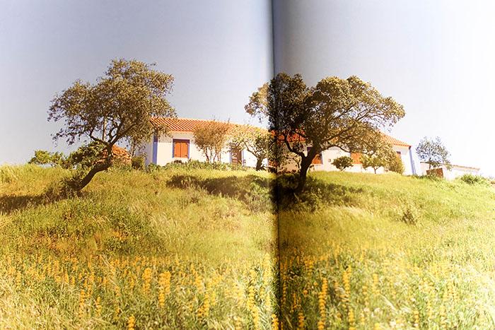 Aupper | Obra Terras de Portugal - Região do Alentejo