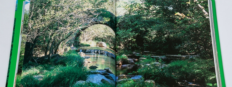 Aupper | Obra A Nossa Natureza