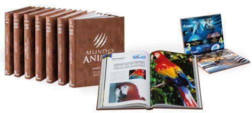 Nova obra Aupper: Mundo Animal